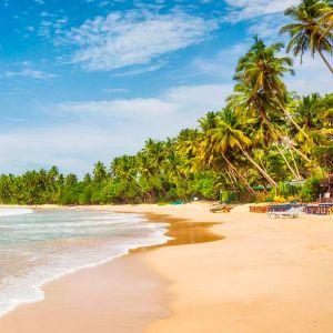 Travel Sri Lanka