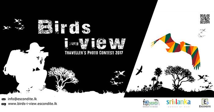 Birds-i-view